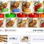 ניהול דף פייסבוק תבליני פרג